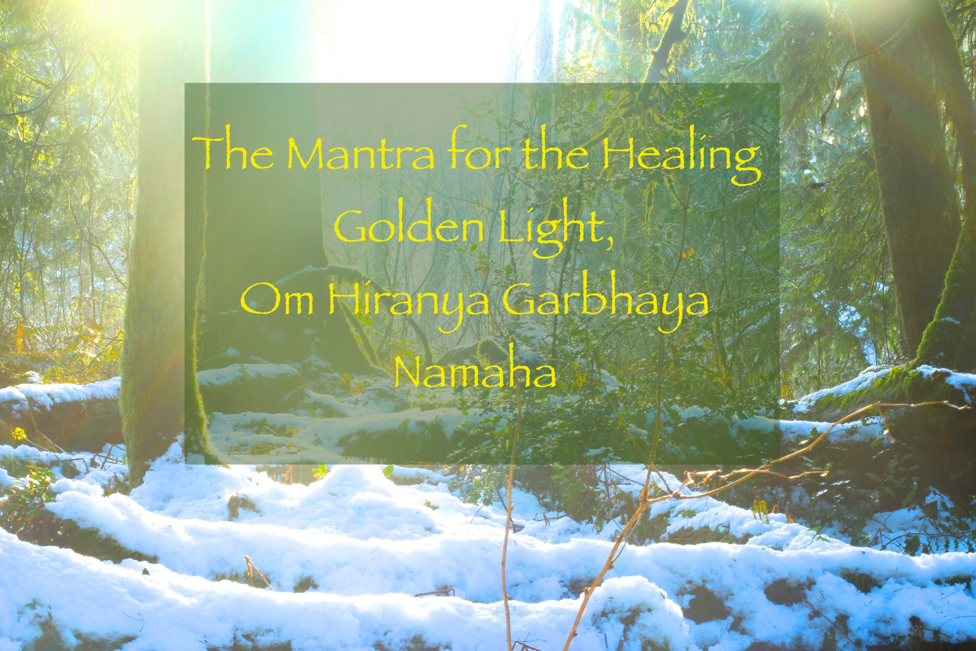 Mantra & Meditation Music Store - Jason Gallant, Sri Rudrananda Prakasha